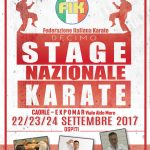 10° Stage Nazionale